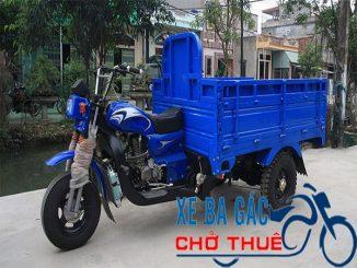 dịch vụ xe ba gác chở hàng thuê tại Thành phố Hồ Chí Minh