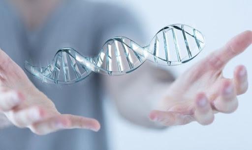 Một lần xét nghiệm ADN hết bao nhiêu tiền?
